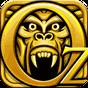 Temple Run: Oz