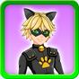 Dress up Cat Noir Miraculous